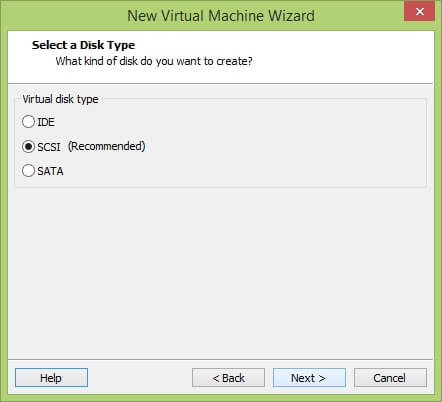 VMware Workstation New Virtual Machine Wizard - Select Disk Type